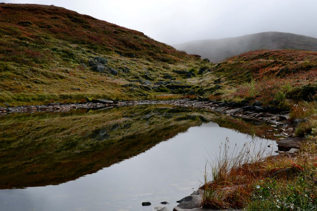 Wandern In Norwegen Für Einsteiger Beyond The Pins